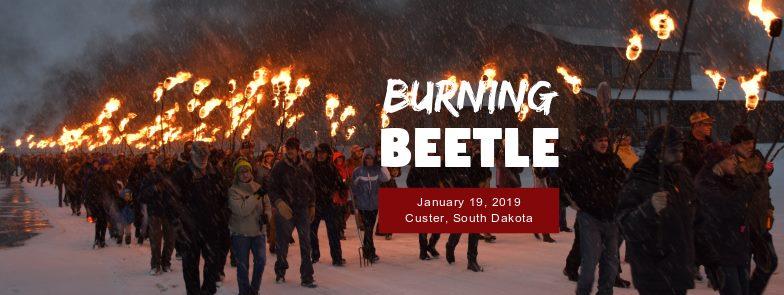 Burning Beetle in Custer, South Dakota